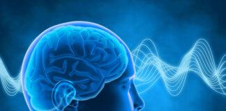 Czym jest trening mózgu